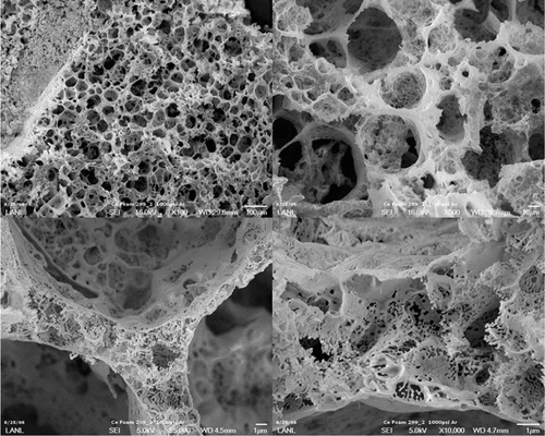 Scanning electron microscope images of cerium nitride foam.