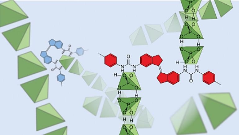 Study Offers New Insight into Molecular Interactions of Dihydrogen Phosphate Anions