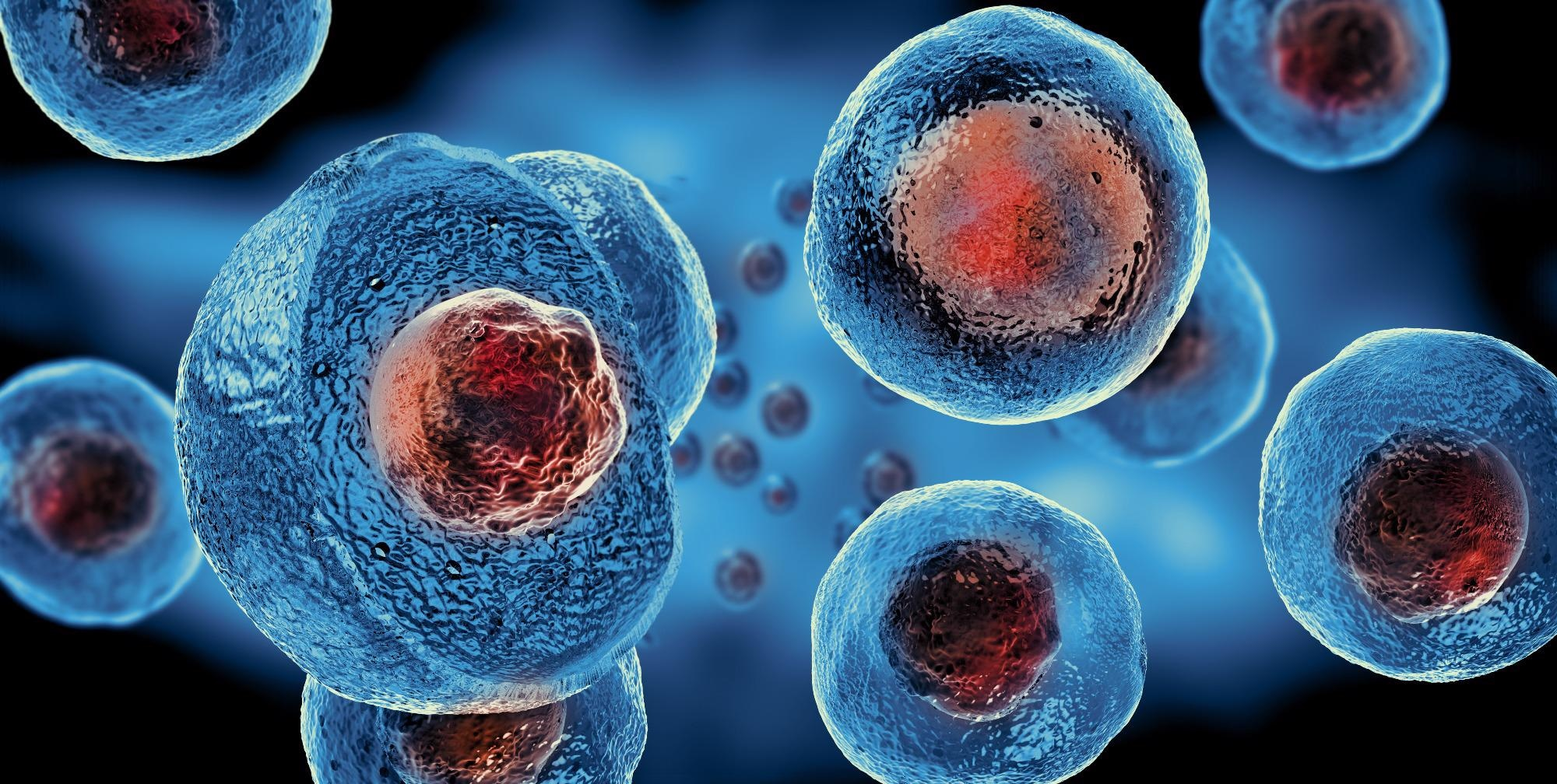 3D Printing of Stem Cells Could Enable Monitoring and Control of Neural Networks