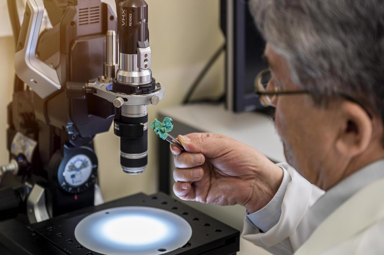 Researchers Develop Bio-Based Industrial Filter from Bath Sponge