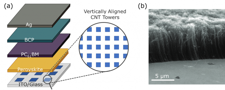 (a) Structure of a solar cell device stack utilising a VACNTs as a hole extraction layer and (b) SEM image of the VACNTs grown on the ITO substrate.
