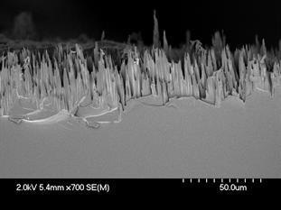 Researchers Create Novel Self-Healing Materials for Space Structures