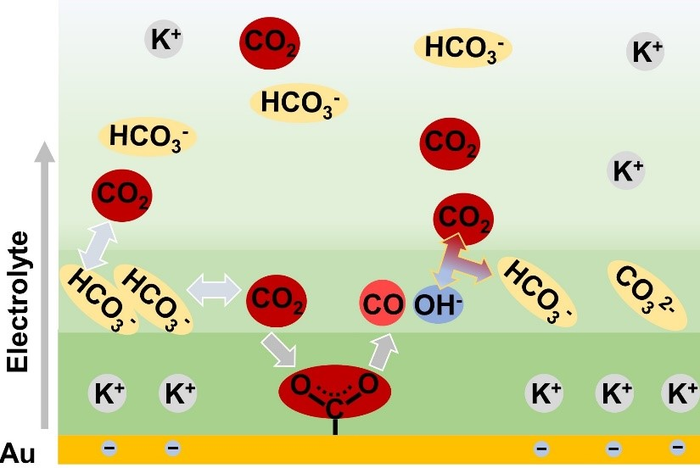 New Study Could Help Advance Electrocatalytic Reduction of CO2.