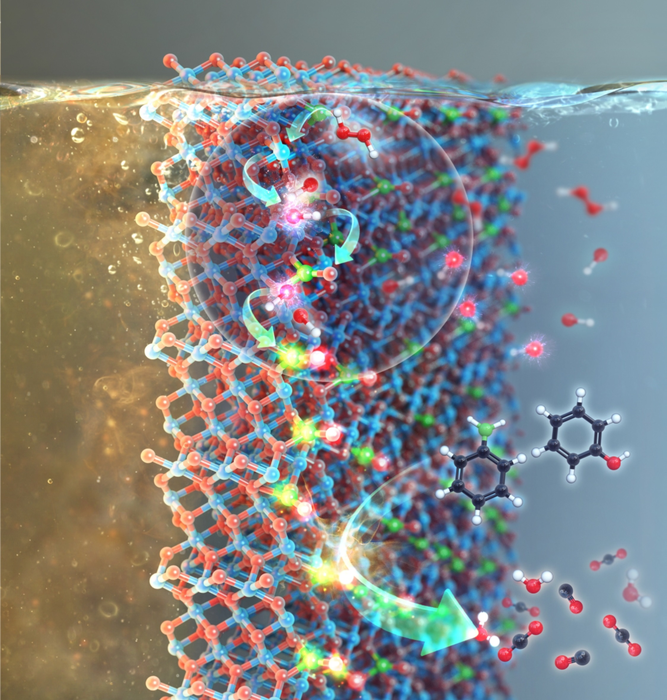 Radicalized NOX Derivatives Supported on Metal Oxides Used to Purify Water.