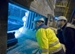 Siemens VAI Metals to Modernize Electric Arc Furnaces for Steel Companies
