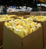The Society of the Plastics Industry Appoints Maine Plastics as Official Recycler for NPE2012