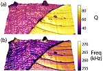 Contact Resonance Viscoelastic Mapping Mode Announced By Asylum Research