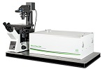 PicoQuant's New Upgrade to Their Confocal Microscopy System Goes Beyond the Diffraction Limit using STED