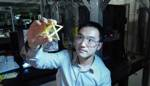 New Ultralight, Ultrastiff 3D Printed Micro-Architected Metamaterials