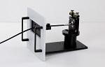 PicoQuant Combines Fluorescence Spectroscopy and Microscopy