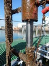 New Coating Cuts Barnacle Build-Up to Keep Ships at Sea Longer