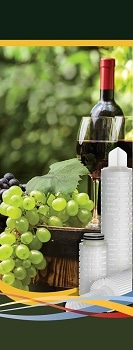 Efficient Removal of Wine Spoilage Microorganisms