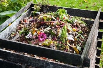 SECOS Launches Home Compostable Resin, An Alternative Compostable Replacement