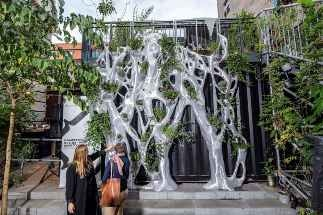 The Genesis Eco Screen – How Bigrep is Making Cities Greener with 3D Printed Urban Ecosystems