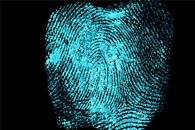 Fluorescent Polymer Used to Illuminate Invisible Bloody Fingerprints