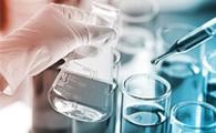 Novel Composite Membranes for Direct Ethanol Fuel Cells