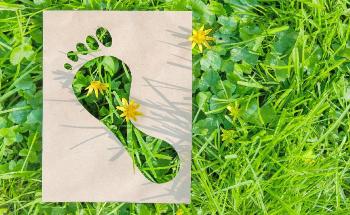 DSM Halves the Carbon Footprint of Akulon® PA6