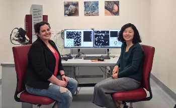 QUT Embraces Automated Mineralogy with the Installation of a TESCAN TIMA