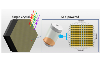 Efficient Strategy to Obtain High-Quality Perovskite Single Crystals