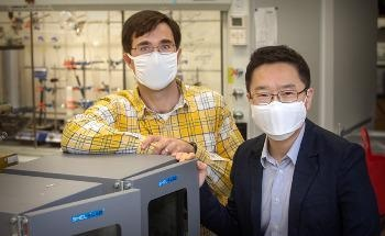 New Way to Use Lignin from Plants in Battery Electrolytes