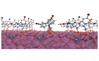 Electrode Coating can Significantly Improve the Performance of Organic Solar Cells
