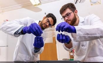 Researchers Produce Biodegradable Films from Agricultural Residues