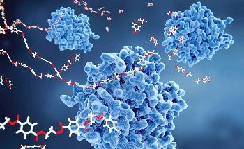 Researchers Developing Biorenewable Polymers with Self-Healing Properties