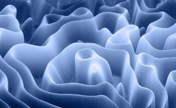 Shape-Morphing Natural Materials Printed Digitally