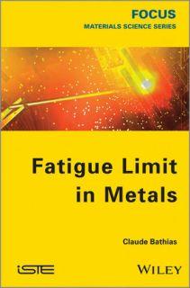 Fatigue Limit in Metals