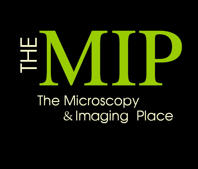 The MIP (The Microscopy & Imaging Place, Inc.)