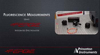 FERGIE - Fluorescence Measurement Set-Up