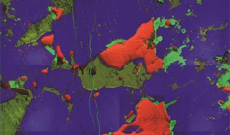 Correlative Microscopy with OIM Analysis™