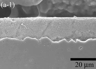 AZoJoMo – AZoM Journal of Materials Online - The variation of cross-sectional and plan images of 2D Al2O3/5 vol% Ni nanocomposite, that were coated on rough substrate and densified at 1000oC.