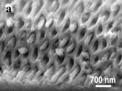 """AZojomo - The """"AZo Journal of Materials Online"""" SEM images of the obtained alumina membrane with SBA-15 nanorods inside"""