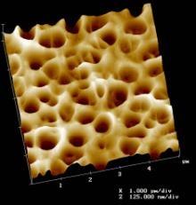 Tablet coating showing complex pore structure. Surface structure, roughness, and surface area can be easily characterized. 5μm scan.