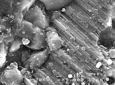 AZoJoMo - AZoM Journal of Materials Online - SEM micrographs of the fracture surface of alumina - 5 vol% silicon carbide nanocomposites sintered at 1800oC.