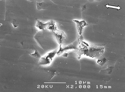 AZoJoMo - AZoM Journal of Materials Online - SEM micrographs of the worn surface of monolithic alumina.
