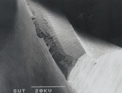 AZoJoMo – AZoM Journal of Materials Online - . (a) SEM micrograph showing corner wear and relief flank wear of the leading edge of an uncoated M41 endmill (v = 18.85 m/min, f = 100 mm/min, d = 4 mm).