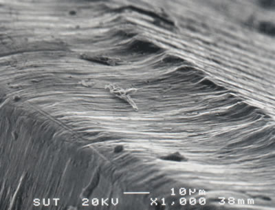 AZoJoMo – AZoM Journal of Materials Online - SEM micrograph showing relief flank wear of the leading edge of a TiCN coated M41 endmill (v = 39.26 m/min, f = 250 mm/min, d = 4 mm).