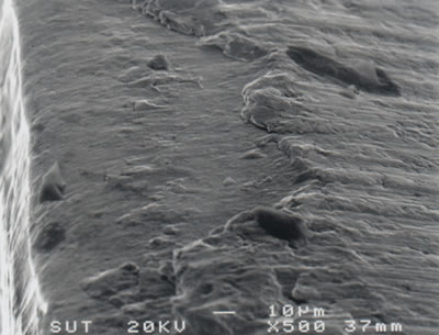 AZoJoMo – AZoM Journal of Materials Online - SEM micrograph showing relief flank wear of the leading edge of a TiN coated M41 endmill (v = 39.26 m/min, f = 250 mm/min, d = 4 mm).