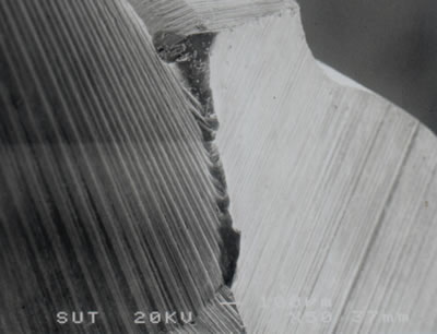 AZoJoMo – AZoM Journal of Materials Online - SEM micrograph showing wear at corner on the rake face of a TiN coated M41 endmill (v = 39.26 m/min, f = 250 mm/min, d = 4 mm after 5 min of cutting).
