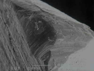 AZoJoMo – AZoM Journal of Materials Online -  SEM micrograph showing wear at corner on the rake face of a TiN coated M41 endmill (v = 50.26 m/min, f = 250 mm/min, d = 4 mm after 7 min of cutting).