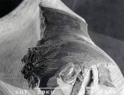 AZoJoMo – AZoM Journal of Materials Online - SEM micrograph showing gross plastic deformation of corner region of a TiN coated M41 endmill as a result of high temperature (v = 50.26 m/min, f = 250 mm/min, d = 4 mm).