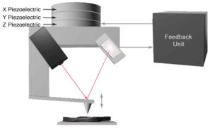 AZoM - The A to Z of Materials - This figure illustrates the primary components of the light lever atomic force microscope. The X and Y piezoceramics are used to scan the probe over the surface.