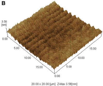AZoJoMO – AZoM Journal of Materials Online - 20 x 20 mm2 dynamic mode AFM images of the surface of PVCi film. 3-D display of the AFM data.