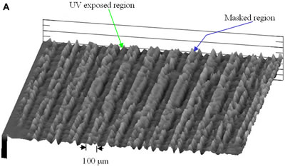 AZoJoMO – AZoM Journal of Materials Online - 3-D surface height pattern mapping of the LC multilayers formed by evaporation on photoinduced PVCi film revealed by the surface profiler for 3 hours 5CB evaporation. Vertical height information: 1.5 – 3 nm for UV exposed region and 4.5 – 8 nm for the masked region.  (a) The periodical striped patterns (100 mm UV exposed and masked regions) of LC multilayers in the horizontal direction;