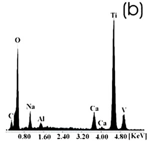 """AZojomo - The """"AZo Journal of Materials Online"""" Chemically-treated Ti alloy sample.  (b) EDX spectrum."""